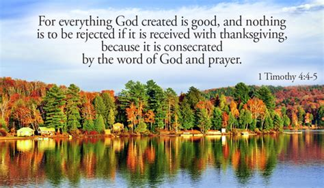 What are you thankful for? - 1 Timothy 4:4-5 eCard - Free
