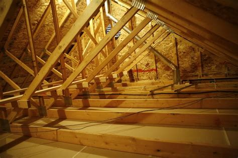 Can You Inspect My Attic for Mold? - Indoor Science- Chicago
