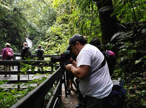 Guided Hike in Monteverde Cloud Forest Reserve